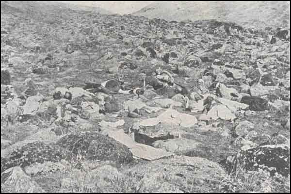 Armenian Genocide GendarmesMassacred.jpg