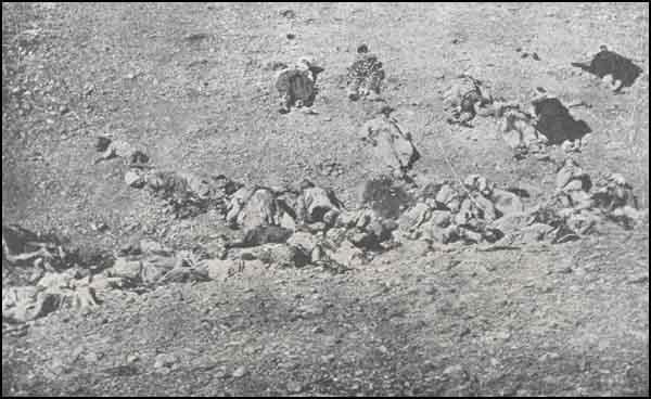 Armenian Genocide MuslimsUsedAsTargets.jpg