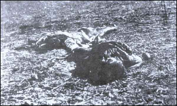 Armenian Genocide TurkishChildrenStrangledByArmenians.jpg